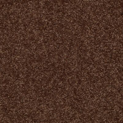 Shaw Floors Queen Versatile Design I 15′ Mocha Chip 00705_Q4784