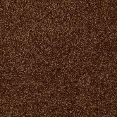 Shaw Floors Queen Versatile Design I 15′ Patina 00707_Q4784
