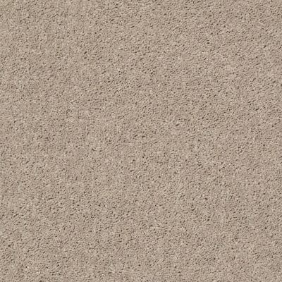 Shaw Floors Queen Point Guard 12′ Bare Mineral 00105_Q4855