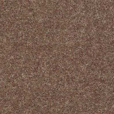Shaw Floors Queen Point Guard 12′ Granola 00701_Q4855
