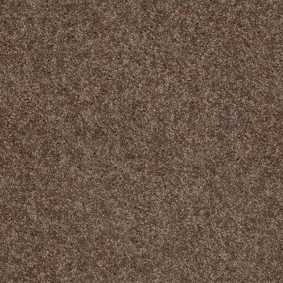 Shaw Floors Queen Point Guard 12′ Cattail 00702_Q4855