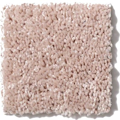 Shaw Floors Queen Point Guard 15′ Flax Seed 00103_Q4885