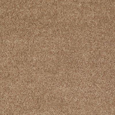 Shaw Floors Queen Point Guard 15′ Golden Echoes 00202_Q4885