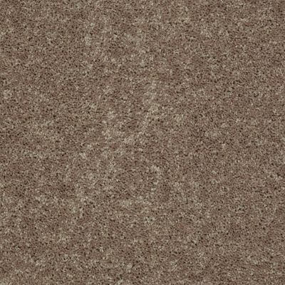 Shaw Floors Queen Point Guard 15′ Hearth Stone 00700_Q4885