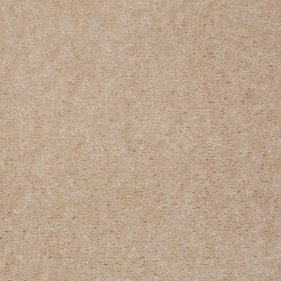 Shaw Floors Queen Newport Dried Ginger 01453_Q4978