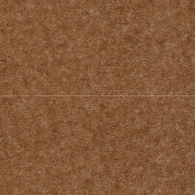 Shaw Floors Queen Newport Sequoia Brown 02446_Q4978
