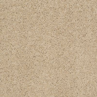 Shaw Floors Apd/Sdc Haderlea Wild Straw 00106_QC314