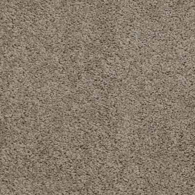 Shaw Floors Apd/Sdc Haderlea River Rock 00300_QC314