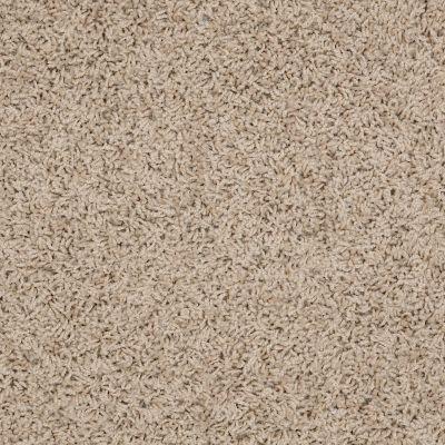 Shaw Floors Apd/Sdc Gallantry (s) Bleached Straw 00106_QC367