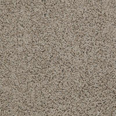 Shaw Floors Apd/Sdc Gallantry (s) River Moss 00300_QC367