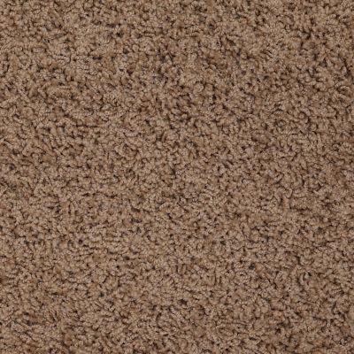 Shaw Floors Apd/Sdc Gallantry (s) Pottery 00700_QC367