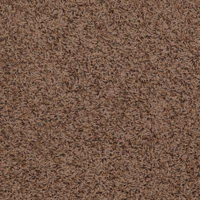Shaw Floors Apd/Sdc Gallantry (s) Pine Bark 00702_QC367