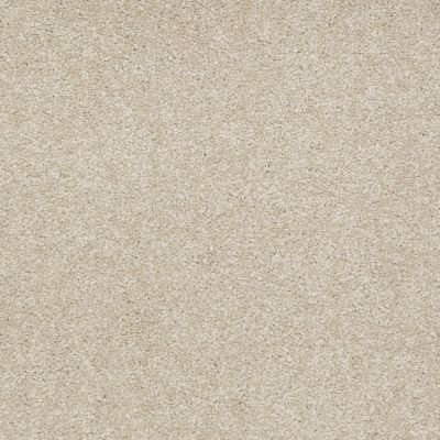 Shaw Floors Apd/Sdc Decordovan II 12′ Country Haze 00307_QC392