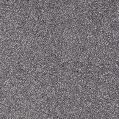Shaw Floors Shaw Design Center Sweet Valley I 12′ Slate 00502_QC420