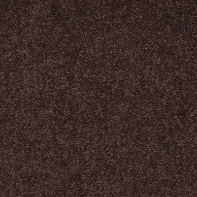 Shaw Floors Shaw Design Center Sweet Valley II 12′ Tundra 00708_QC422