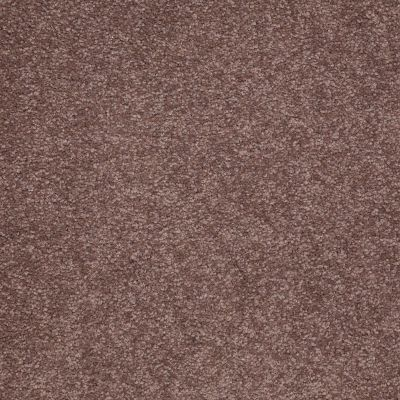 Shaw Floors Shaw Design Center Sweet Valley II 12′ Warm Oak 00709_QC422