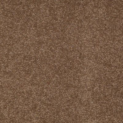 Shaw Floors Shaw Design Center Sweet Valley III 12′ Pine Cone 00703_QC424