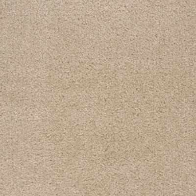 Shaw Floors Roll Special Qs124 White Rose 00116_QS124