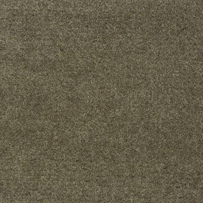 Shaw Floors Roll Special Qs124 Loden 00333_QS124