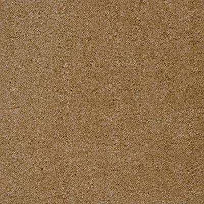 Shaw Floors Roll Special Qs124 Wassail 00740_QS124