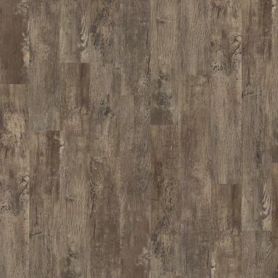 Shaw Floors SFA Bella Cortona 00575_SA356