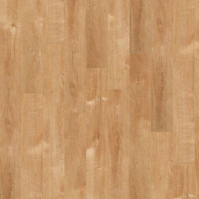 Shaw Floors SFA Tyson Plank 6 Solana Beach 00240_SA369