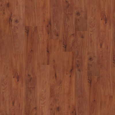 Shaw Floors SFA Tyson Plank 6 Burlington 00650_SA369