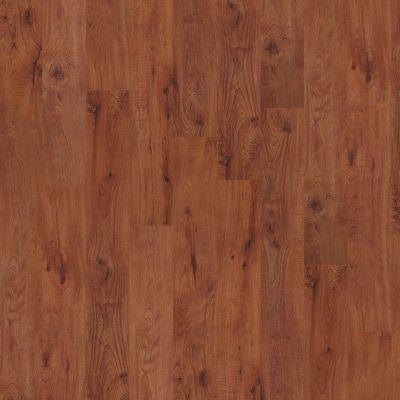 Shaw Floors SFA Tyson Plank 6 Burlington 00650_SA369