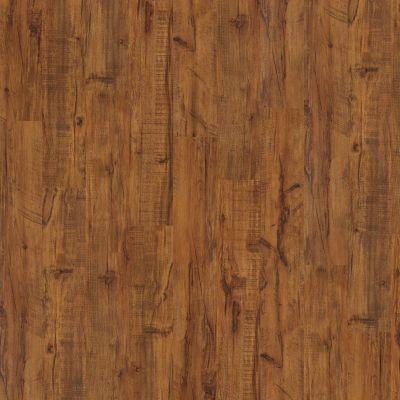 Shaw Floors SFA Dandridge Bonfire 00654_SA375