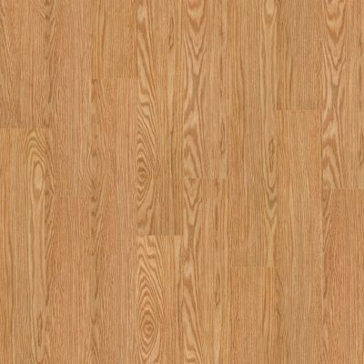 Shaw Floors SFA Georgetown Plus Plank Dutch 00220_SA379