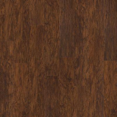 Shaw Floors SFA Georgetown Plus Plank Foundry 00450_SA379
