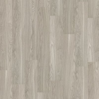 Shaw Floors SFA Georgetown Plus Plank Shadow 00520_SA379