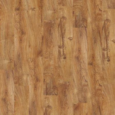 Shaw Floors SFA Georgetown Plus Plank Tropic 00600_SA379