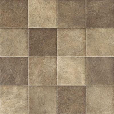 Shaw Floors Resilient Residential Olympian Tan 00569_SA386