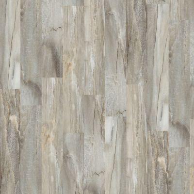 Shaw Floors SFA Stone Fusion Portabello 00757_SA389