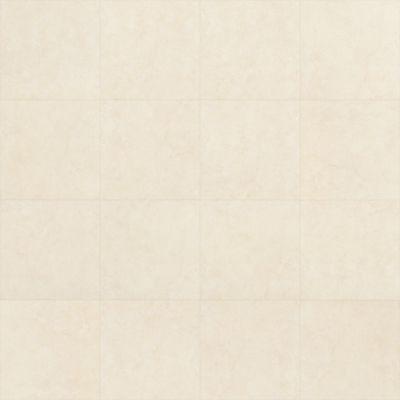 Shaw Floors SFA Canvas 00100_SA399