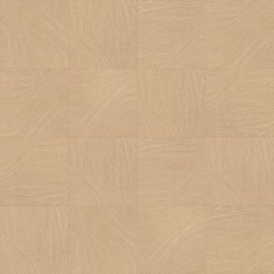 Shaw Floors SFA Infusion Umber 00201_SA399