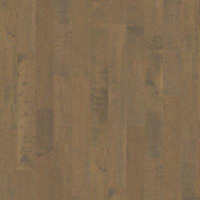 Shaw Floors SFA Tallahassee Oceanside 00529_SA426