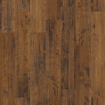 Shaw Floors SFA Monterrey Cedar Mountain 00317_SA444