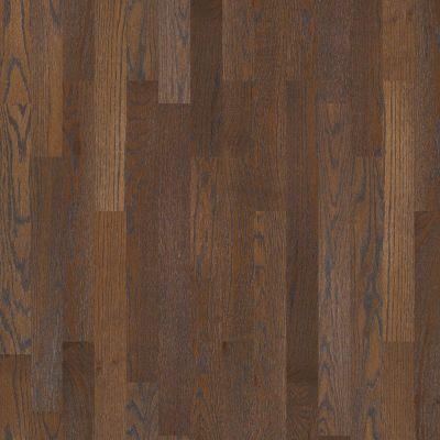 Shaw Floors SFA Townsend Hearth 00327_SA446