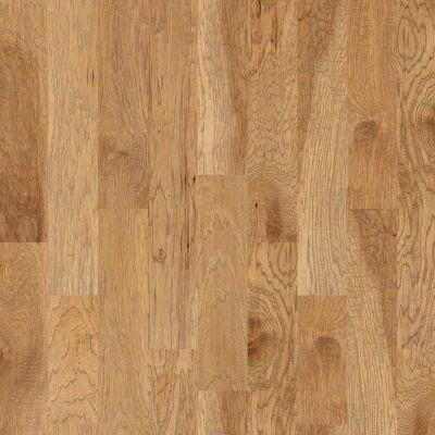 Shaw Floors SFA Grant Grove 6 3/8 Bravo 02002_SA457