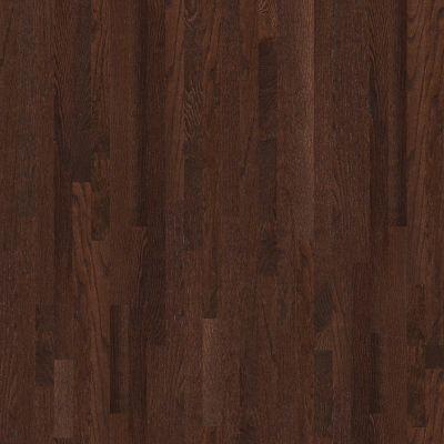 Shaw Floors SFA Family Affair 70 Gloss 2.25 Coffee Bean 00958_SA478