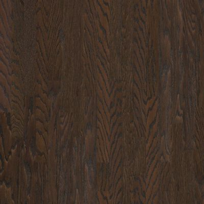 Shaw Floors SFA Arden Oak 3.25 Chocolate 07011_SA489
