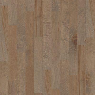 Shaw Floors SFA Clearwater Oceanside 00529_SA495