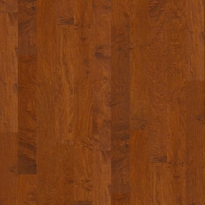 Shaw Floors SFA Clearwater Burnside 00627_SA495