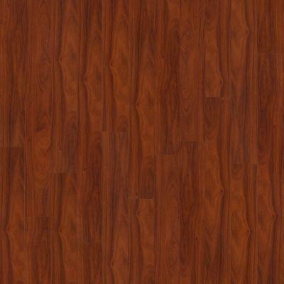 Shaw Floors SFA Reflections Tibet 00615_SA510