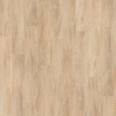 Shaw Floors SFA Enclave 6 Chelsea 00309_SA552