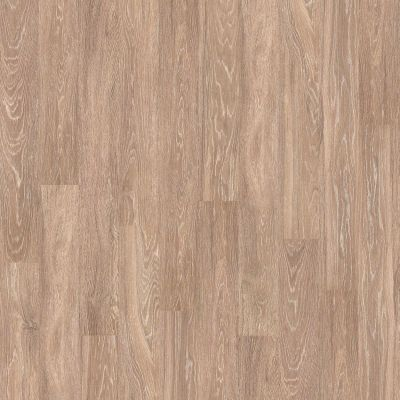 Shaw Floors SFA Belleview Moscato 00282_SA564