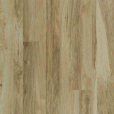 Shaw Floors SFA Mt. Everest Classic Hickory 00272_SA577