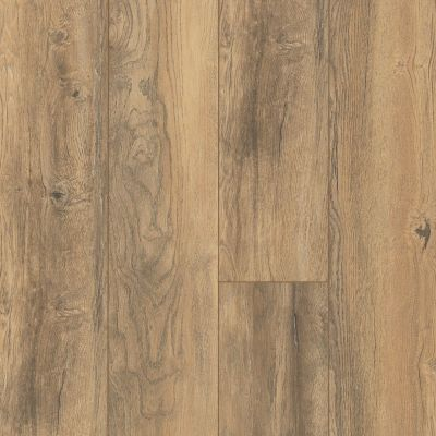 Shaw Floors SFA Ellenburg Golden Sands 02017_SA597